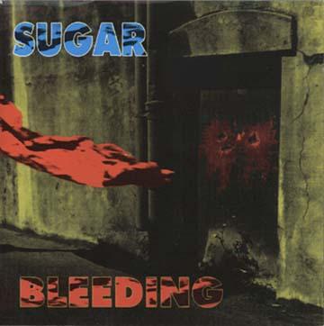 Husker Du Annotated Discography/Bootleg Vinyl & CDs