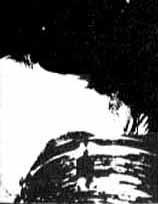 Grant, 27 Jan 1983